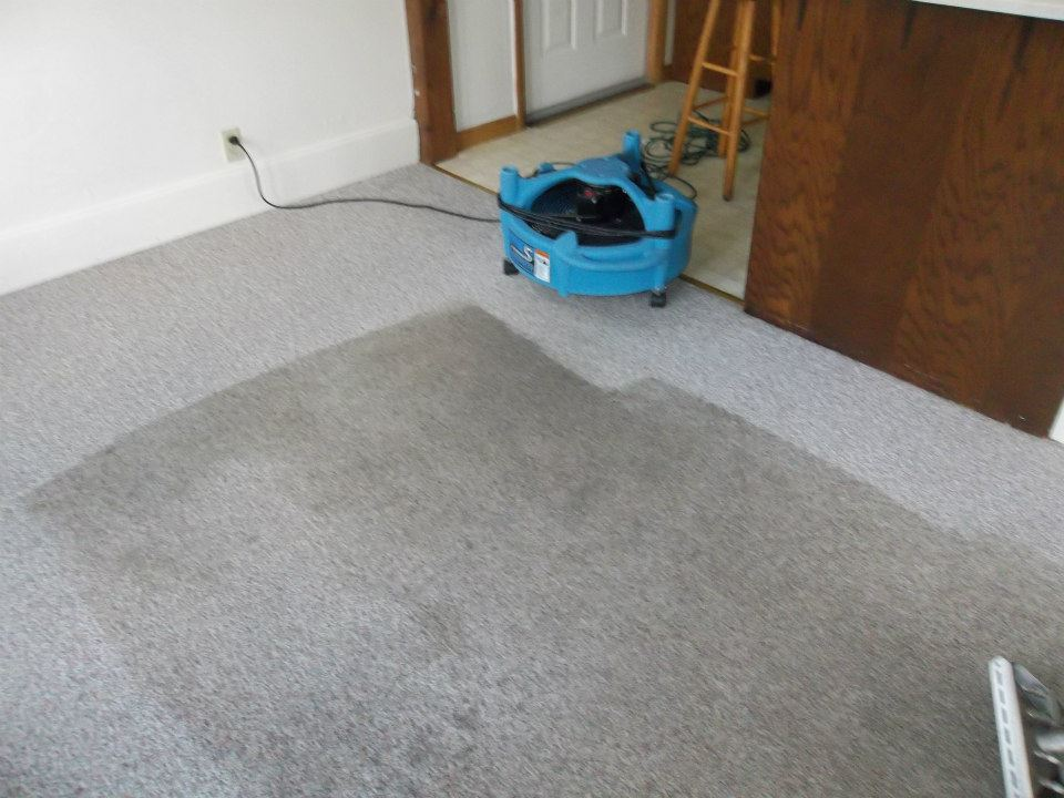 carpet drying3